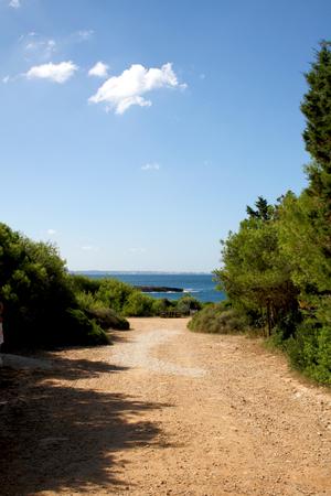 sea cliff: Road to porto selvaggio (Puglia, Italy) Stock Photo
