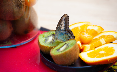 Machaon Butterfly (papilio machaon) on fresh fruits. Stock Photo