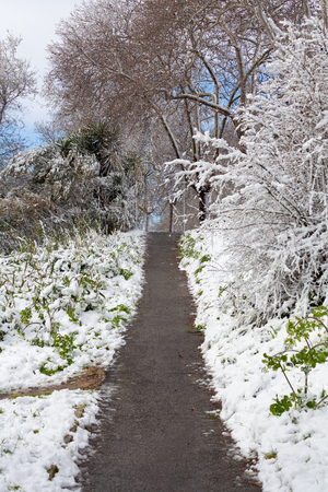 Pathway in Rome after a snowfall