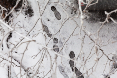 Footstep tracks on the street after a snowfall (branches on foreground)