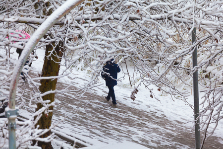 People walking on sidewalks after a snowfall (branches in foreground).
