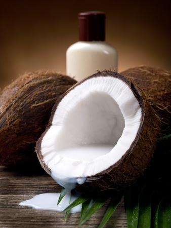 walnut coconut soap Stock Photo - 9613922