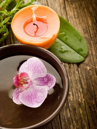 natural  wellness spa concept