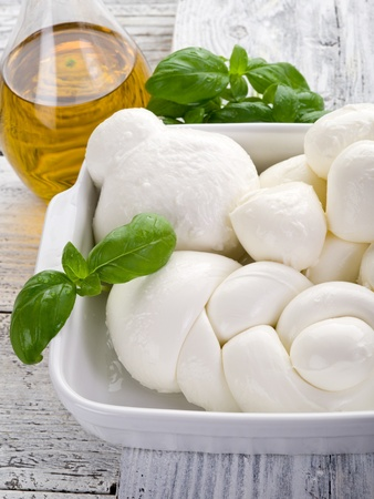 vatiety of italian buffalo mozzarella photo