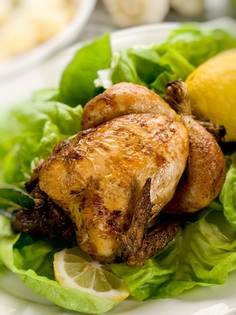 chicken with green salad photo