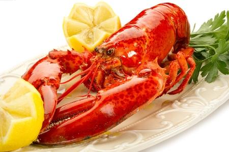 lobster: 삶은 새우 - Aragosta의의 bollita