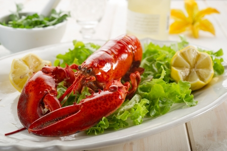 lobster: whole lobster with salad - aragosta e insalata
