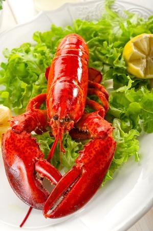 whole lobster with salad - aragosta e insalata Stock Photo - 10242401