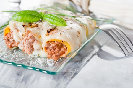 cannelloni ragout photo