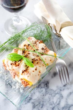 cannelloni ragout Stock Photo - 10242436