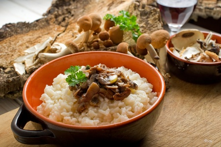 risotto with cep mushroom Stock Photo - 10353288