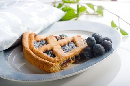 blueberry homemade cake photo