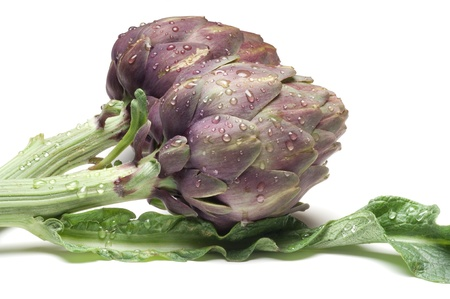 leaf vegetable: artichoke on white background Stock Photo