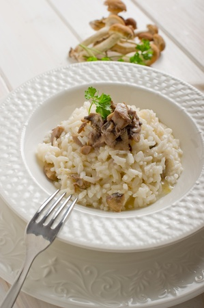 cep mushroom: risotto with cep mushroom Stock Photo
