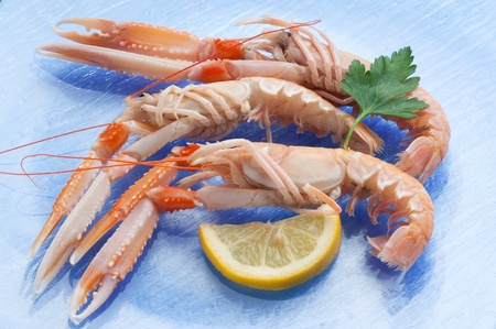 norway lobster with ingredients ready to cooking photo
