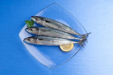 dorade: mackerel with ingredients ready to cooking
