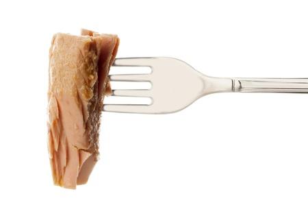 fork with tuna photo