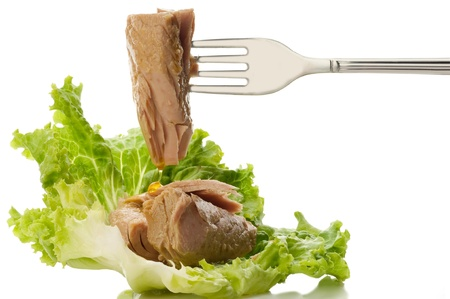 salad fork: fork with tuna