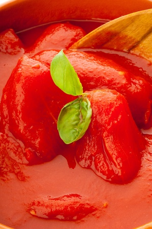 tomatoes sauce photo