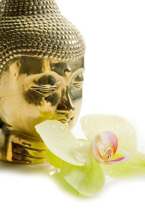 cabeza de buda: Buda cabeza con orquídeas
