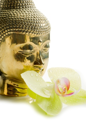 buddha head with orchid photo