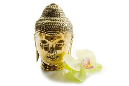 buddha head: buddha head with orchid