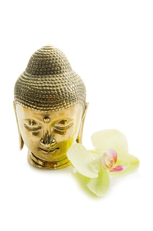 buddhism prayer belief: buddha head with orchid