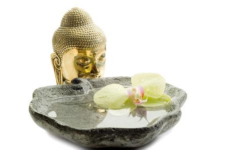 buddha head photo