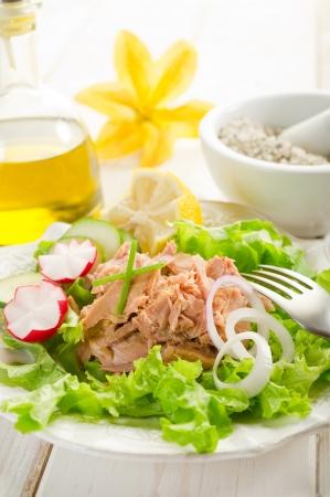 tuna salad Stock Photo - 10426333