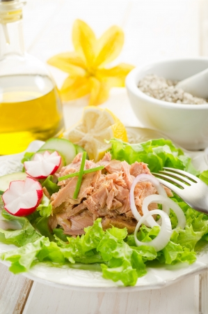seafood salad: tuna salad