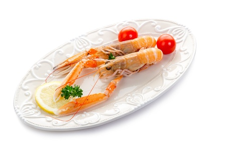 norwey lobster  photo