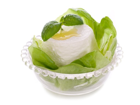 ricotta with basil and lettuce photo