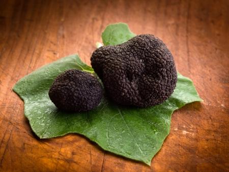 black truffle over leaf on wood background Stock Photo