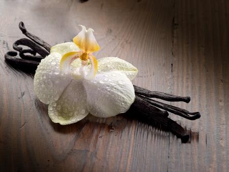 flor de vainilla: de vainilla palo con orquídeas
