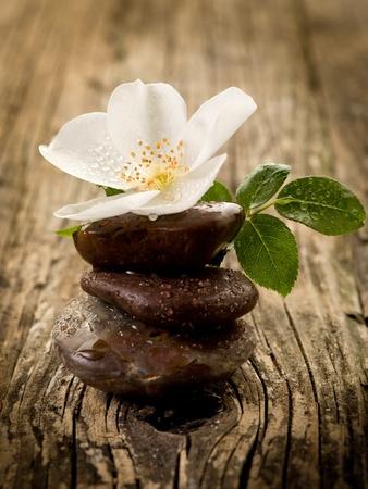 meditation stones: spa concept