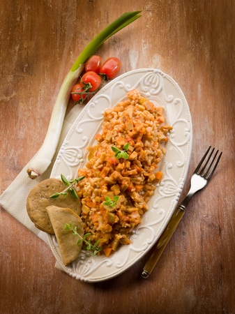 Risotto with seitan ragout, vegetarian food Stock Photo - 13376016