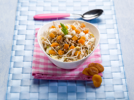 salad with spelt dried apricot soy sprouts and raw fennel, selective focus Stock Photo