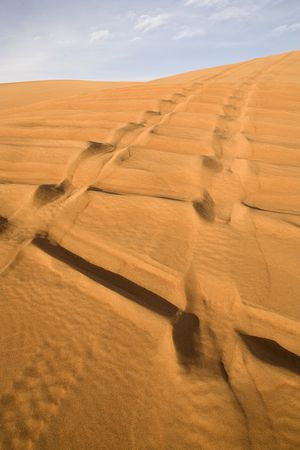 Landscape of Dubai desert with track of off road cars. photo
