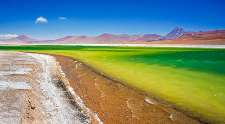 Altiplanic lagoon in Atacama