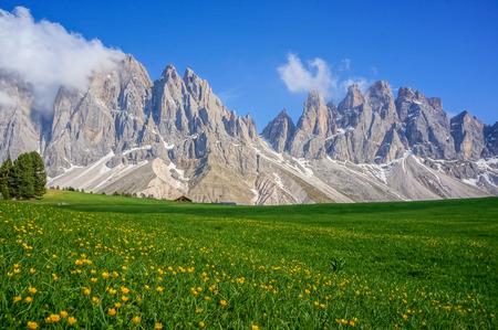 Grünes Feld und Berge