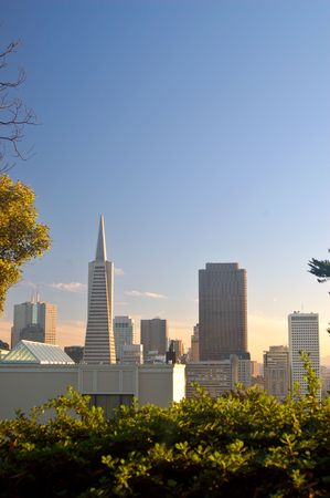 coit tower: San Francisco skyline as seen from the base of the Coit Tower