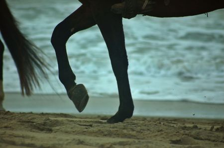 hooves of a horse poinding on the sand along the beach