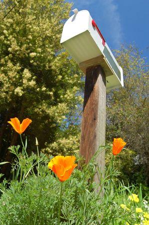 꽃과 봄 날에 사서함 스톡 콘텐츠