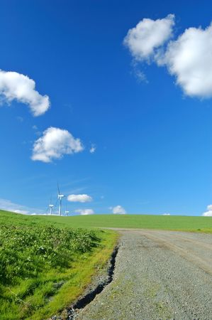 spring roadside