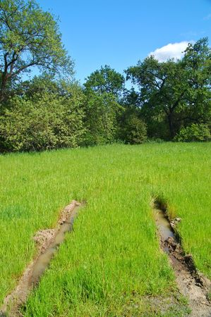 muddy tracks: tire tracks on a muddy field