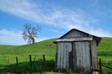 農村部の春の田舎