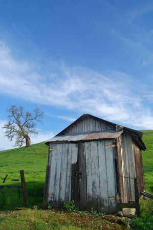 農村の春の田園風景