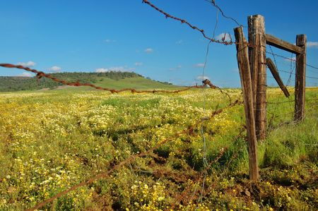 the countryside of northern California in springtime Banco de Imagens