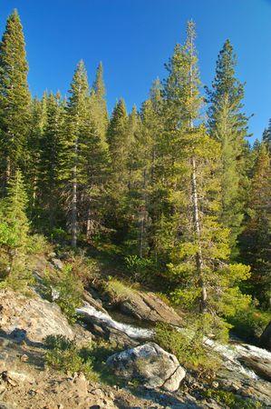 タホ湖周辺北部シエラの山岳風景 写真素材