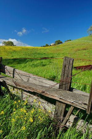 春にはカリフォルニア州北部の田園地帯